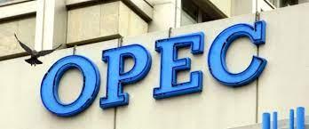 OPEC warns natural gas crisis may create oil market turbulence